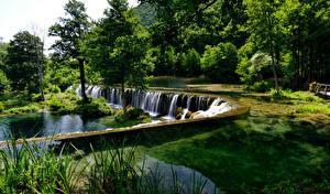 Фото Босния и Герцеговина Реки Водопады Пейзаж Деревья Pliva Природа