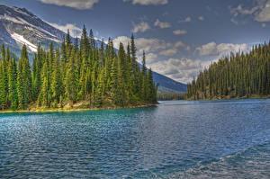 Фотография США Парки Озеро Горы Леса Облака HDR Джаспер парк Maligne Lake