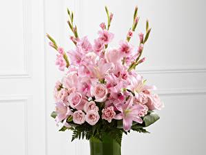 Фото Букеты Гладиолусы Розы Лилии Эустома Розовых Белый фон Цветы