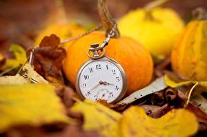 Картинка Тыква Крупным планом Часы Карманные часы