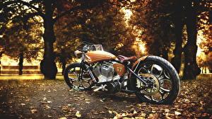 Картинки Harley-Davidson Осень Листья