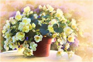 Картинка Картина Букеты Рисованные Igor Levashov Цветы