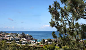 Обои США Парк Пейзаж Море Калифорнии Ели Emerald Bay State Park Природа