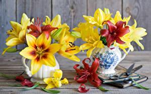 Фото Тюльпаны Ваза цветок