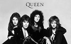 Фотографии Queen Мужчины Freddie Mercury