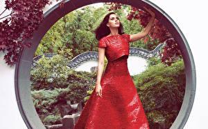 Фотография Katy Perry Платье Знаменитости Девушки