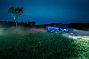 Картинки Мазерати Синяя Ночь Трава Уличные фонари 2014 Quattroporte (Novitec) машина Природа