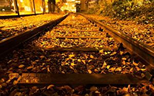 Фотография Железные дороги Осенние Листва Рельсы