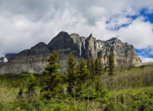 Фотография США Парк Гора Пейзаж Ели Glacier Природа