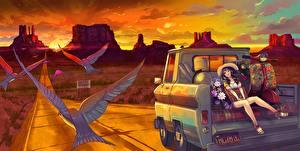 Картинка Птицы Дороги Шляпа mesa, original Аниме Девушки