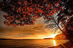 Фото Сезон года Осень Побережье Рассветы и закаты Небо Пейзаж Природа