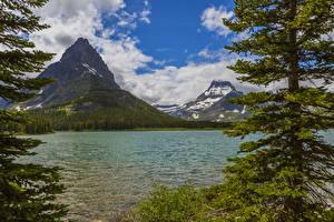 Фотография США Парк Гора Озеро Пейзаж Ели Glacier Montana Природа