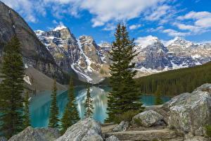 Обои для рабочего стола Пейзаж Канада Парки Гора Озеро Небо Ель Банф Moraine Lake Природа