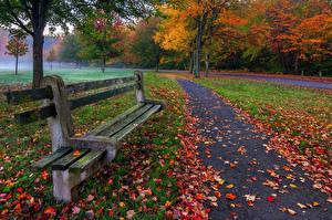 Фото Парки Сезон года Осень Лист Скамья Природа