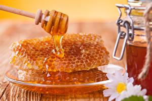 Картинка Мед Ромашки Пчелиные соты Тарелка Пища Цветы