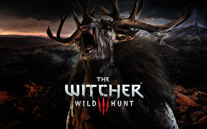 Фото Ведьмак The Witcher 0: Wild Hunt Монстры Рога Фэнтези