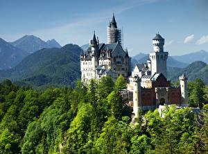 Обои Германия Замки Горы Нойшванштайн Дерево