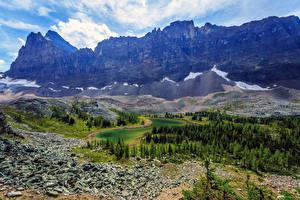Фото Канада Парк Гора Озеро Ель Yoho Природа