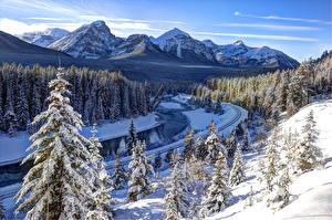 Фотография Канада Парк Лес Реки Гора Зима Банф Снегу Bow River Природа