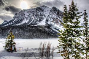 Обои для рабочего стола Канада Сезон года Зима Парк Горы Банф Снега Ель Природа