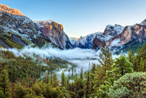 Картинки Сезон года Зима США Пейзаж Парки Горы Йосемити Ели Природа