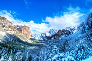 Фотография Штаты Парки Сезон года Зима Горы Небо Йосемити Ели Природа