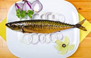 Фото Морепродукты Рыба Лук репчатый Лимоны Тарелка
