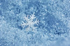 Обои Зима Природа