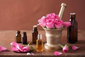 Обои Розы Розовый Лепестки Цветы