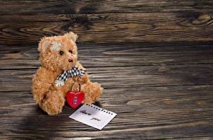 Фотографии Праздники Игрушки Плюшевый мишка День всех влюблённых Сердечко