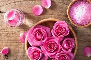Картинка Роза Розовый Лепестков цветок