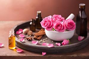 Картинки Розы Розовый Лепестки Цветы