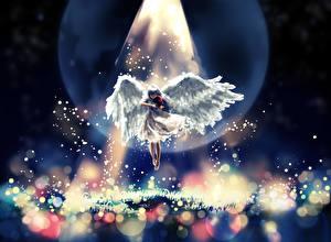 Картинки Ангелы Скрипки Магия Крылья Лучи света Фэнтези Девушки