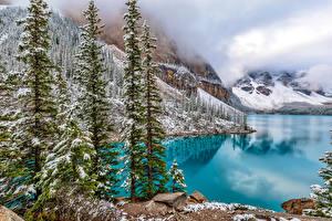 Картинки Канада Озеро Парк Банф Снег Ель Moraine Lake Природа