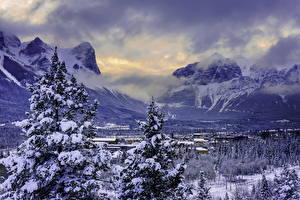 Картинки Пейзаж Сезон года Канада Зима Горы Рассветы и закаты Ель Canmore Alberta Природа