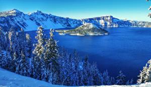 Обои США Парки Озеро Зимние Пейзаж Ель Снег Crater Lake National Park Природа