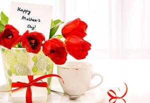 Фото Тюльпаны Вазе Красных Чашке Цветы
