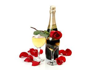 Обои Роза Шампанское Лепестков Бокал Бутылка цветок Еда