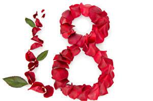 Обои Праздники Международный женский день Розы Лепестки цветок