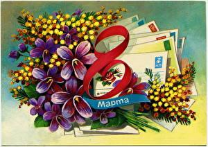 Картинки Праздники 8 марта Акация серебристая