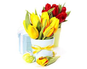 Фотографии Букеты Тюльпаны Пасха Вазе Подарки Яйцо Бантики Белым фоном Цветы