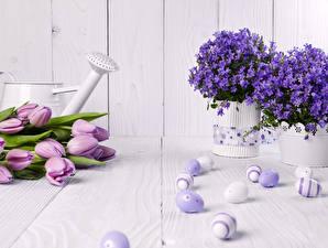 Картинки Праздники Пасха Тюльпаны Колокольчики - Цветы Яйца Ваза Цветы