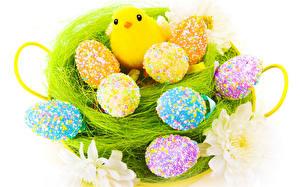 Картинки Праздники Пасха Птенец курицы Яйца Солома