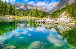 Обои Словения Горы Парк Озеро Камни Пейзаж Ели Triglav National Park Природа