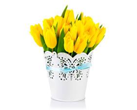 Фотография Тюльпаны Желтый Вазы Бантик цветок