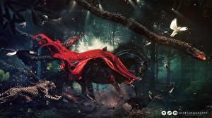 Фотографии Креатив Лошадь Собаки Орлы Голубь Ягуары Бегущая Доберманы Фантастика