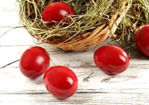 Фото Праздники Пасха Яйца Солома Красный