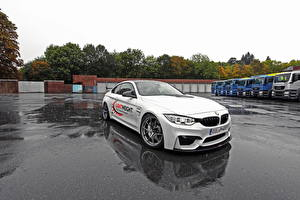 Фотография BMW Стайлинг Белый 2014 M4 F32 (Lightweight) автомобиль