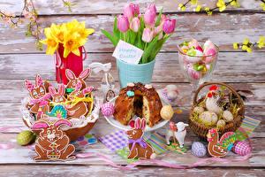 Фотографии Праздники Пасха Выпечка Тюльпаны Печенье Нарциссы Курица Кролики Яйца Корзина