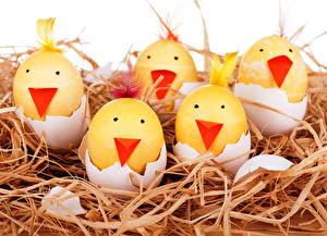 Фотографии Праздники Пасха Яйца Солома